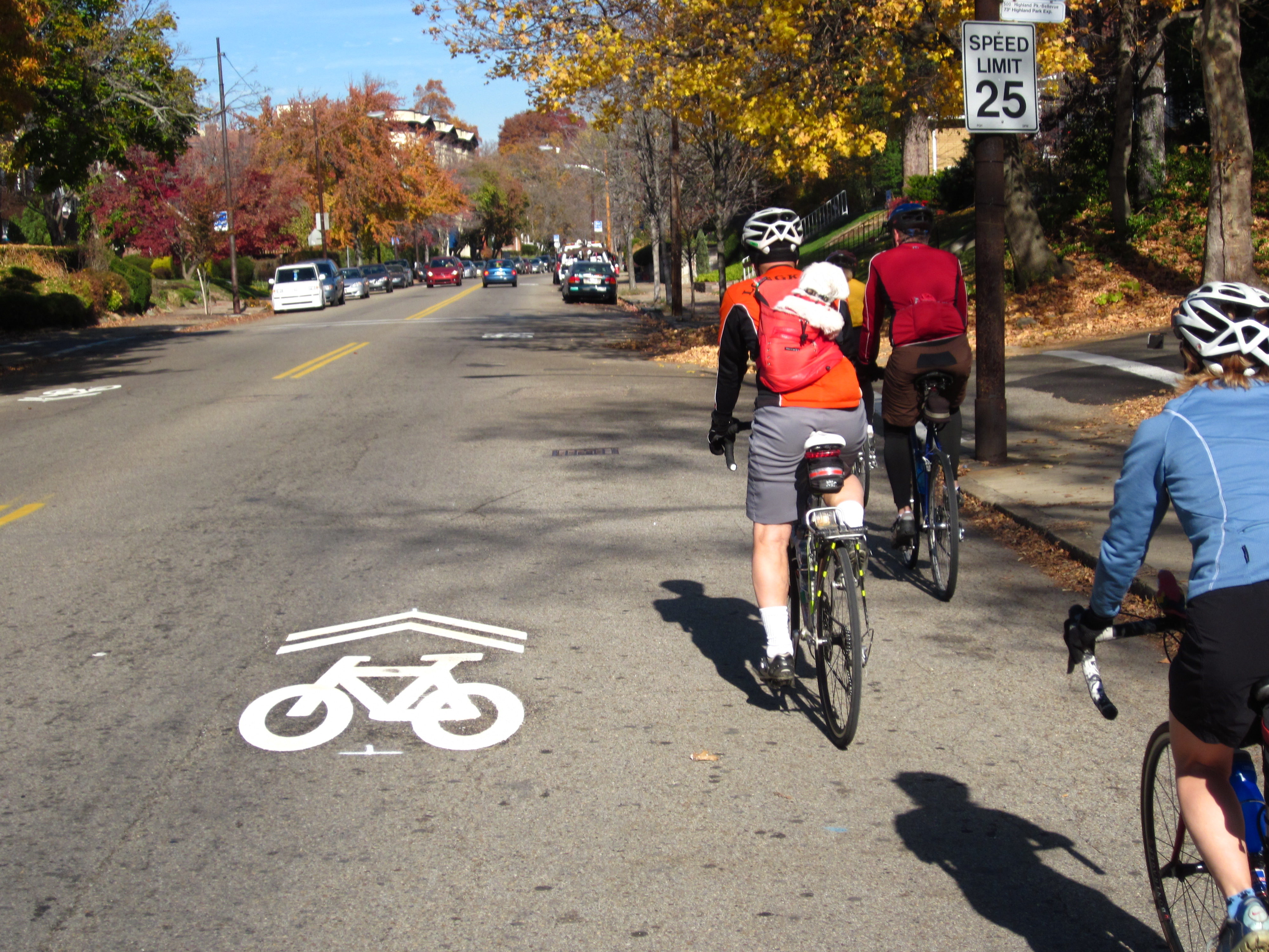 Bike Feature Pic 1 Sharrow